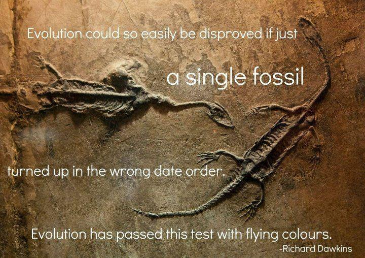Disproving Evolution